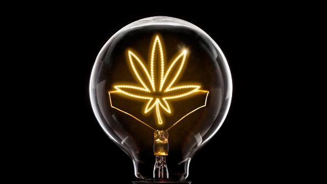 DEA Permits Further Cannabinoid-based Pharma Research