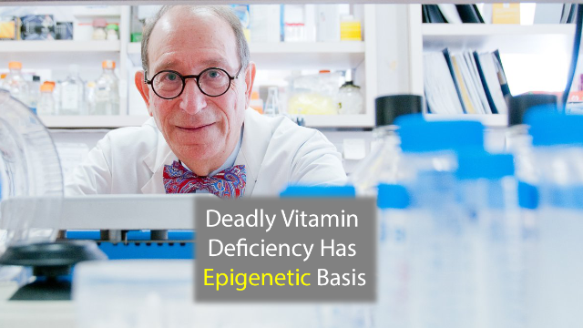 Deadly Vitamin B12 Deficiency is Caused by Epimutation