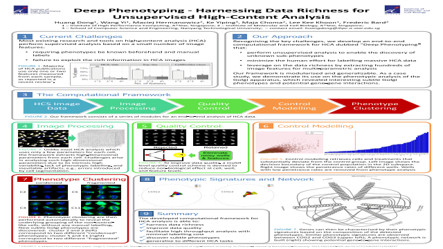 Deep Phenotyping - Harnessing Data Richness for Unsupervised High-Content Analysis