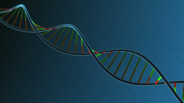 DefiniGEN Licenses CRISPR-Cas9 Gene Editing Technology from Broad Institute