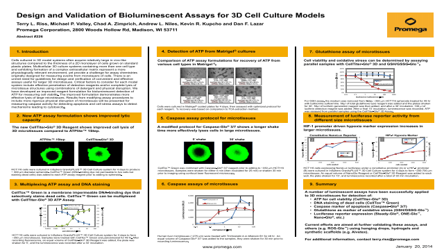 Design and Validation of Bioluminescent Assays for 3D Cell Culture Models Poster