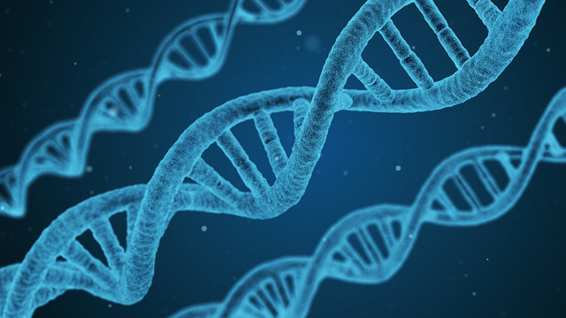 Desktop Genetics Opens £1.5 Million Investment Round via SyndicateRoom
