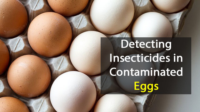 Detecting Insecticides in Contaminated Eggs