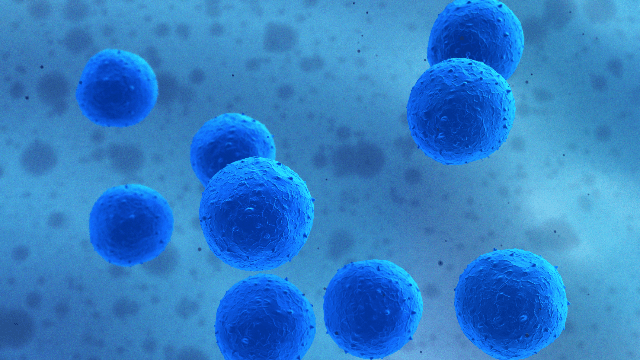 Detecting Pathogens in Wastewater
