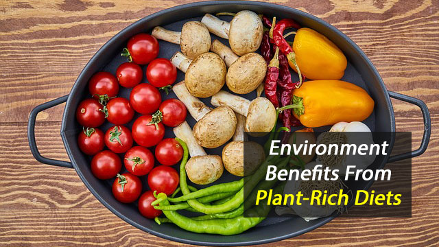 Diet High in Fruit and Vegetables Helps the Environment