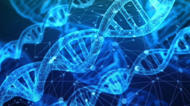 Discovery of First Genetic Variants Associated with Meaning in Life