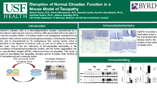 Disruption of Normal Circadian Function in a Mouse Model of Tauopathy