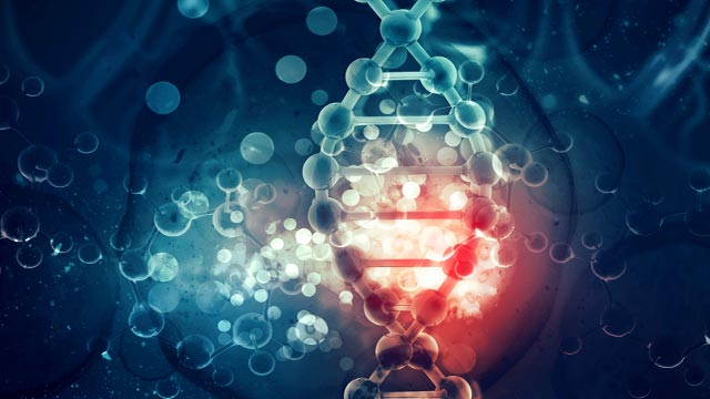 DNA With a Twist: Discovery Could Further Antibiotic Drug Development