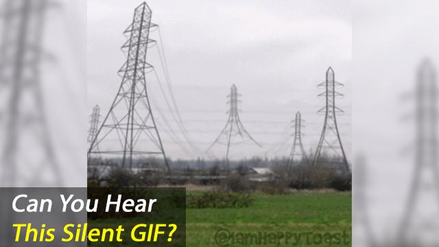 Do You Hear This Silent GIF?