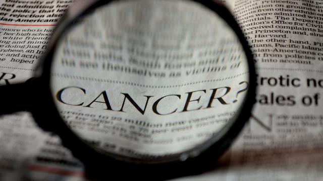 Drug Makes Immune Cell Eat Tumors