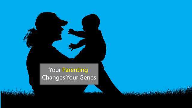 Early Life-Changing Experiences Also Change Your Genes