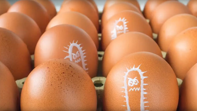 Eggshell Nanostructure and Implications for Food Safety