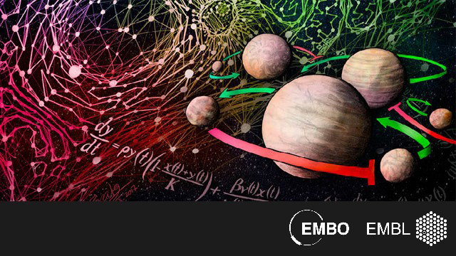 EMBO Workshop: Integrating Systems Biology: From Networks to Mechanisms to Models
