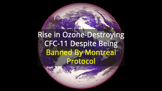 Emissions of an Ozone-Destroying Chemical are Rising Again