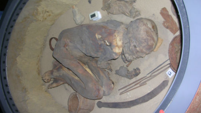 "Enduring Embalming ""Recipe"" Revealed by Egyptian Mummy"