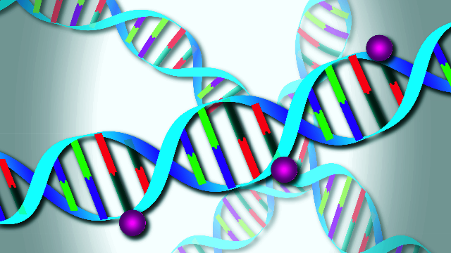 Epigenetic Labels Predict Increased Mortality