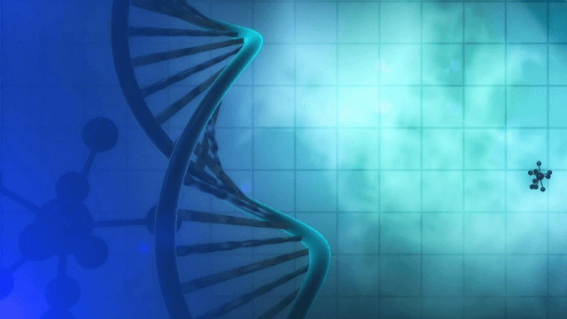 Epigenetic Therapy For Prader Willi Syndrome