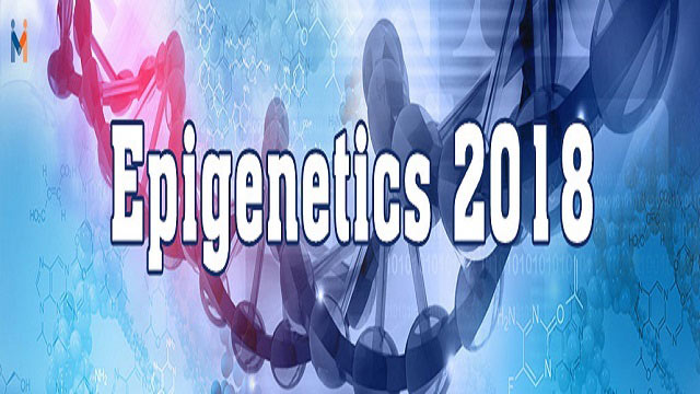 Epigenetics Conference 2018