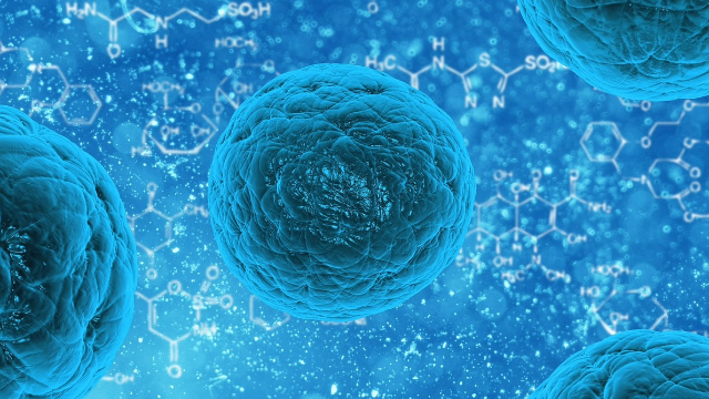 Essential Gene for Chemically Reprogramming Human Stem Cells