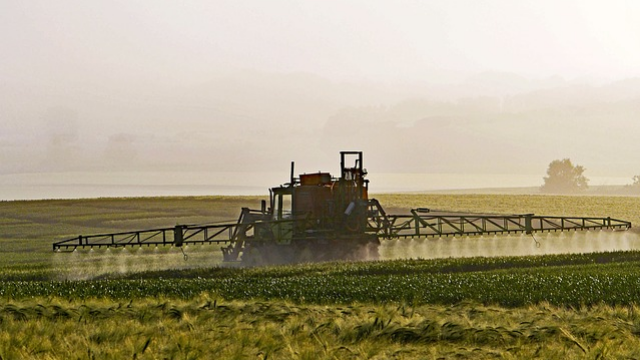 European's Food Largely Free of Pesticides