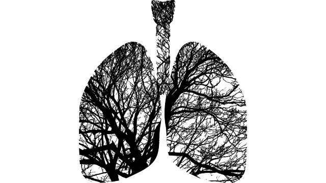 Exosomes are Fundamental to COPD Pathogenesis