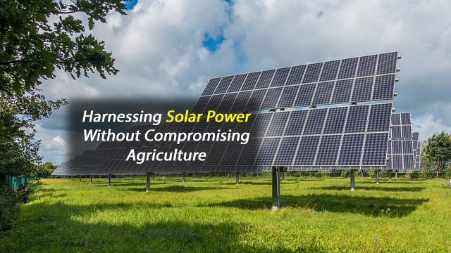 Expanding Solar Energy Without Compromising Farming and Conservation