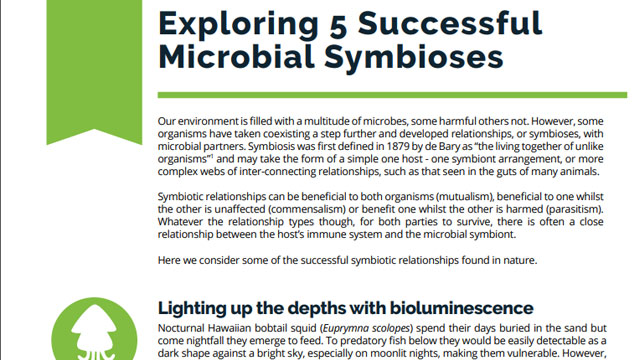 Exploring 5 Successful Microbial Symbioses