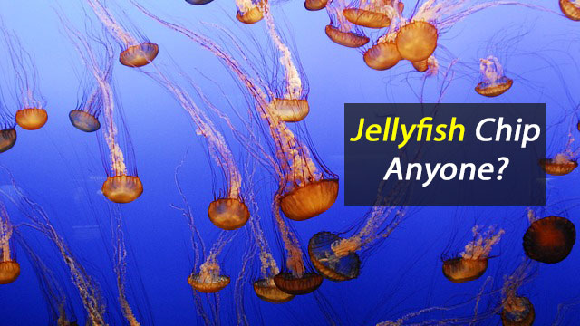 Fancy A Jellyfish Chip?