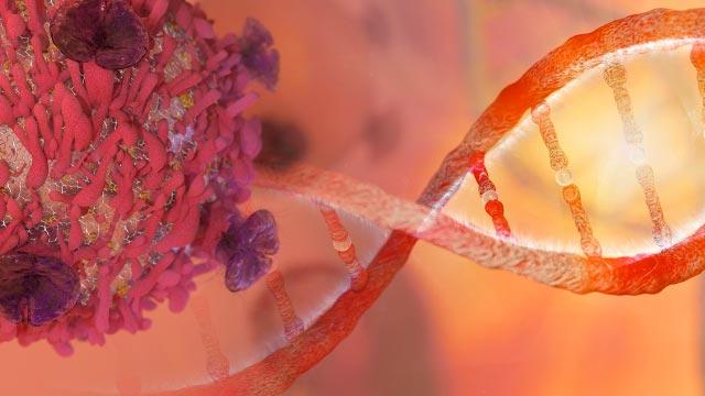 FDA Approves Drug That Targets Key Genetic Driver of Cancer