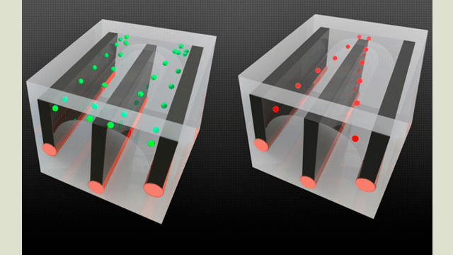 Fiber Innovations Open Macro Era of Microfluidics