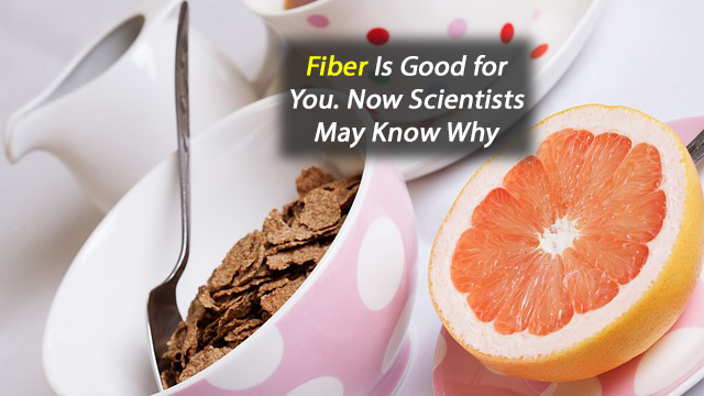 Fiber Is Good for You. Now Scientists May Know Why