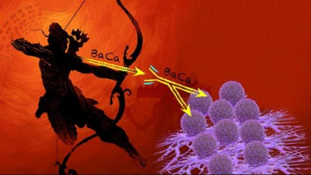 Firing a 'Two-headed Arrow' to Kill Ovarian Cancer