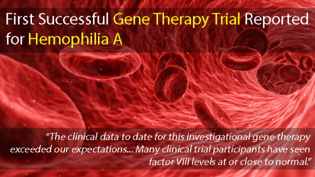 First Successful Gene Therapy Trial Reported for People with Hemophilia A