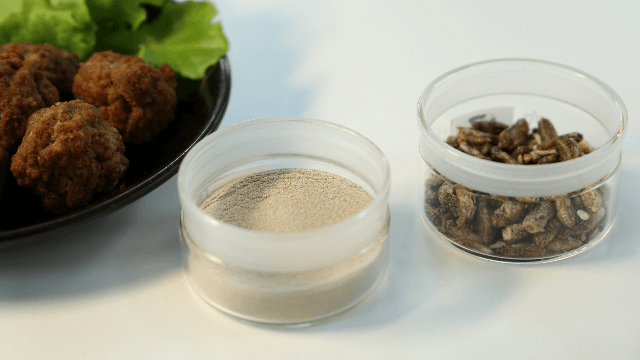 Food Ingredients Developed from Raw Materials