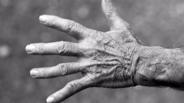 Forensic Review of Abuse Amongst Elderly