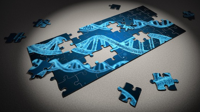 Foundations Laid for Next-Generation Forensic DNA Profiling