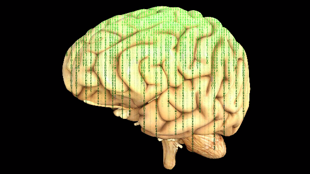 Frontoparietal Network Creates an Abstract Dynamic Image of Movements