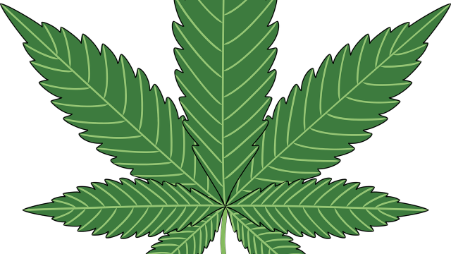 Full Spectrum Laboratories Secures U.S. Cannabinoid Biosynthesis Patent