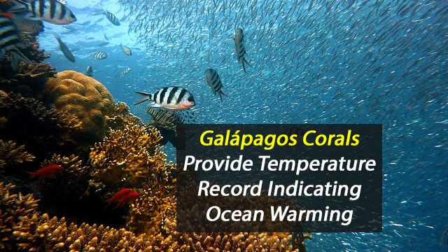 Galápagos Corals Reveal Evidence of Ocean Warming