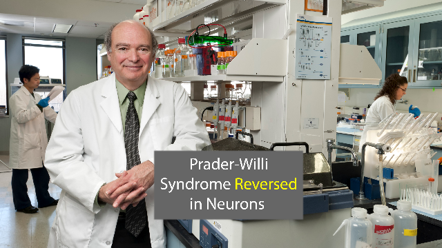 Gene Awakening Reverses Prader-Willi Syndrome in Neurons
