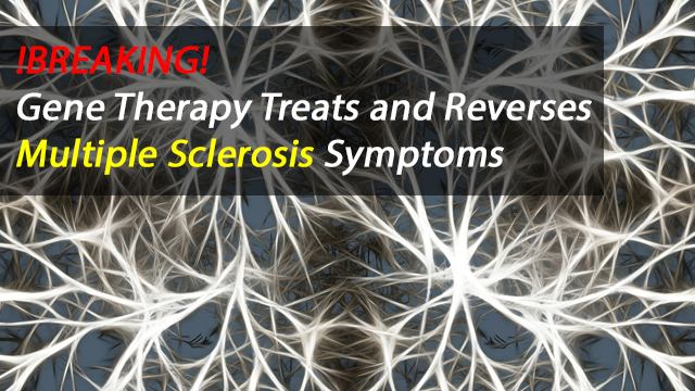 Gene Immunotherapy Approach Prevents and Reverses Symptoms of Multiple Sclerosis