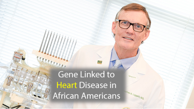 Gene Linked to Heart Failure in African Americans