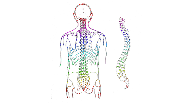 Gene Signature Could Predict Recovery After Spinal Cord Injury ...