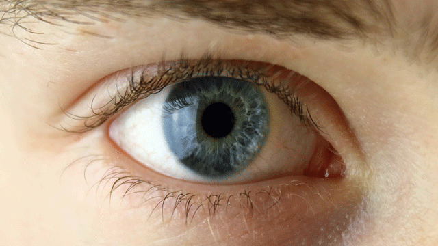 Gene Therapy Trial a Success in Treating Rare Form of Blindness