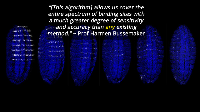 Genetic Algorithm Details DNA's Links to Disease