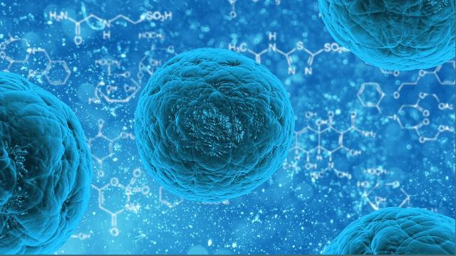 Genetics Control Regenerative Properties Of Stem Cells