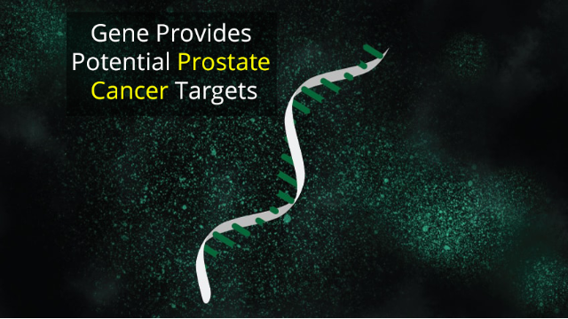 Genome's Dark Matter Gives Prostate Cancer Clues