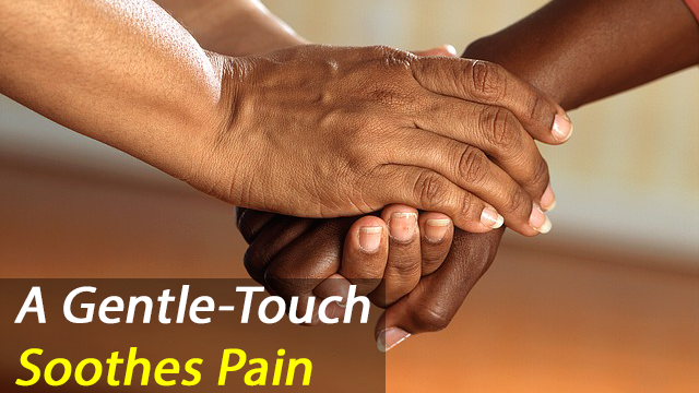 Gentle Touch Reduces Feelings of Social Exclusion
