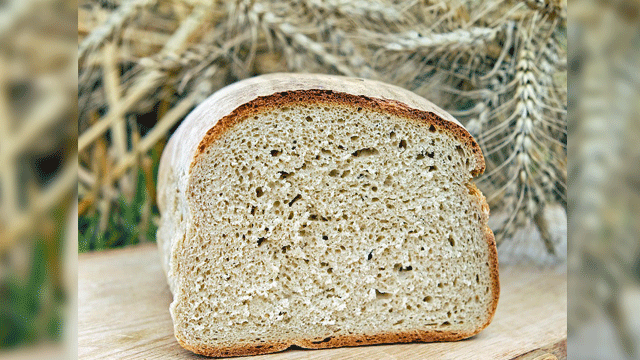 Gluten Vaccine Trial: Enrolment Opens for Phase 2