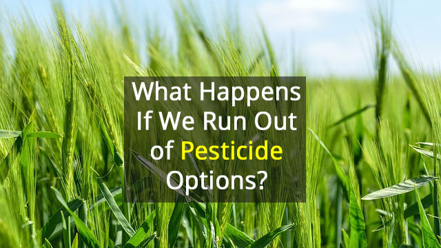 Growing Issue of Pesticide Resistance - Action Needed!